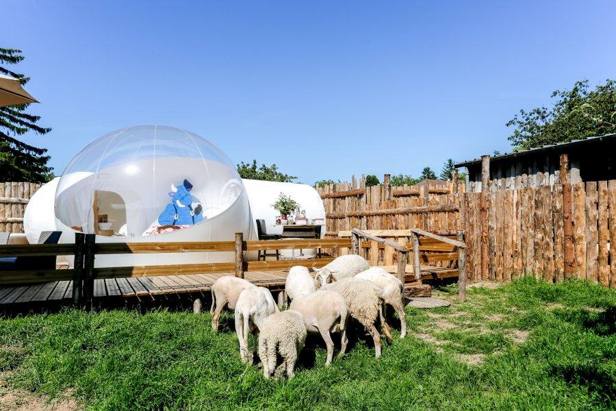 nuit insolite la petite ferme des vitoz bulle is re rhone alpes. Black Bedroom Furniture Sets. Home Design Ideas
