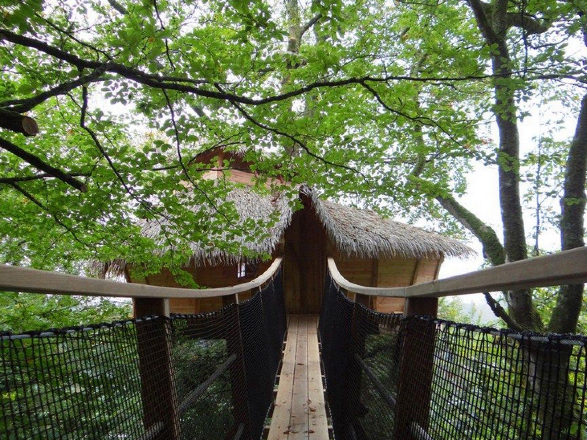 charbonni re cabane dans les arbres bretagne hebergement insolite dormir bulle. Black Bedroom Furniture Sets. Home Design Ideas