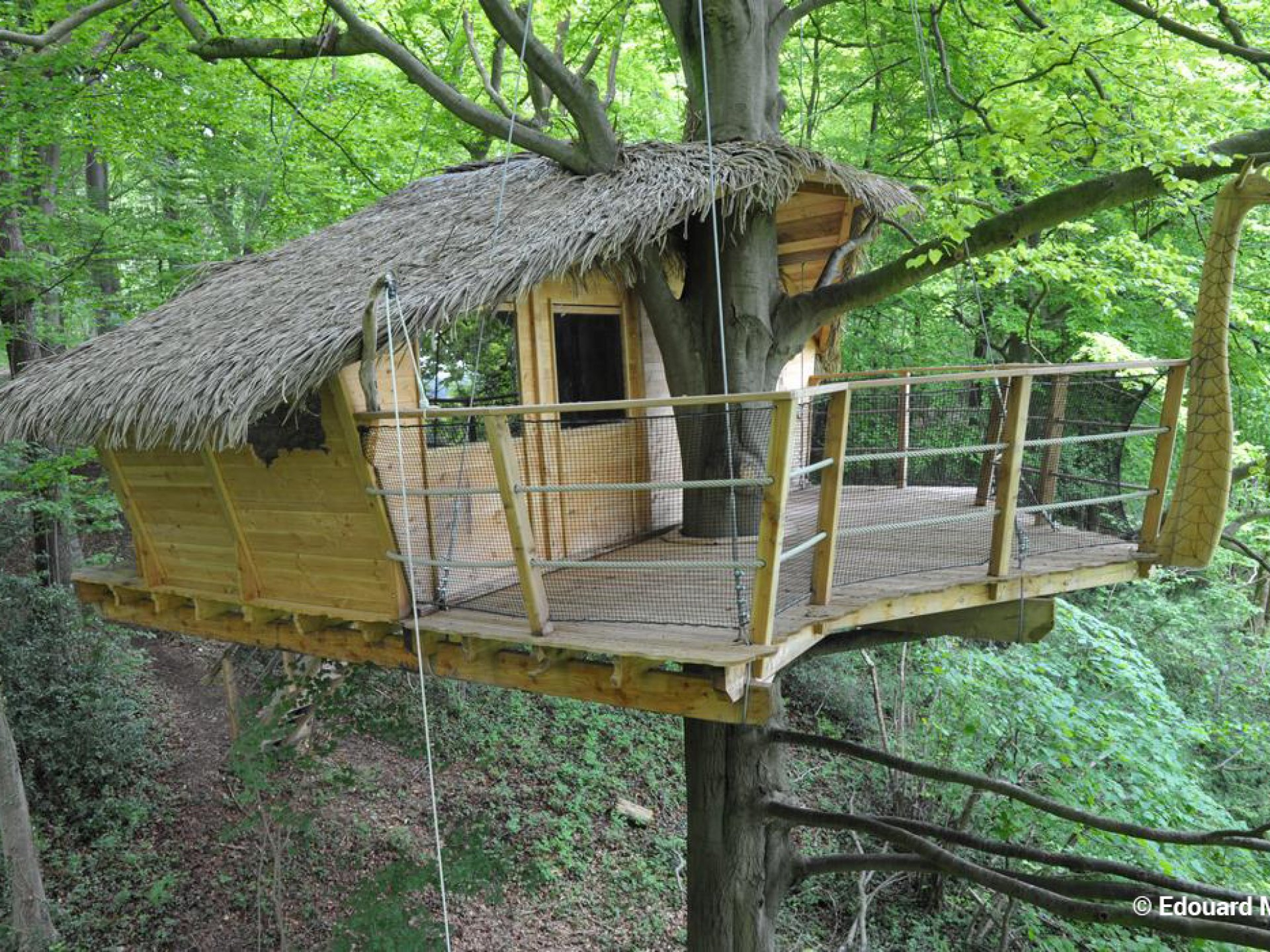 drakkar cabane dans les arbres haute normandie normandie location insolite. Black Bedroom Furniture Sets. Home Design Ideas