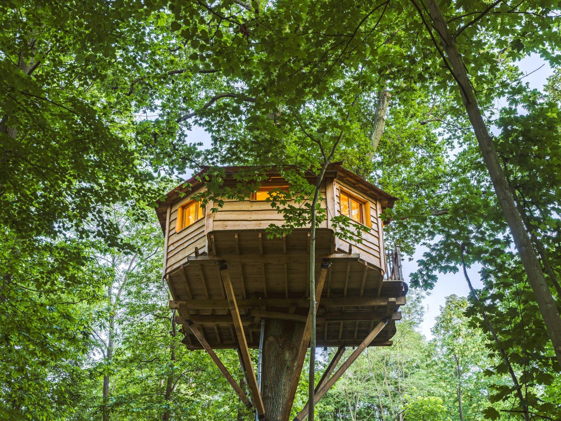 secr te cabane dans les arbres picardie hauts de france hebergement insolite dormir bulle. Black Bedroom Furniture Sets. Home Design Ideas