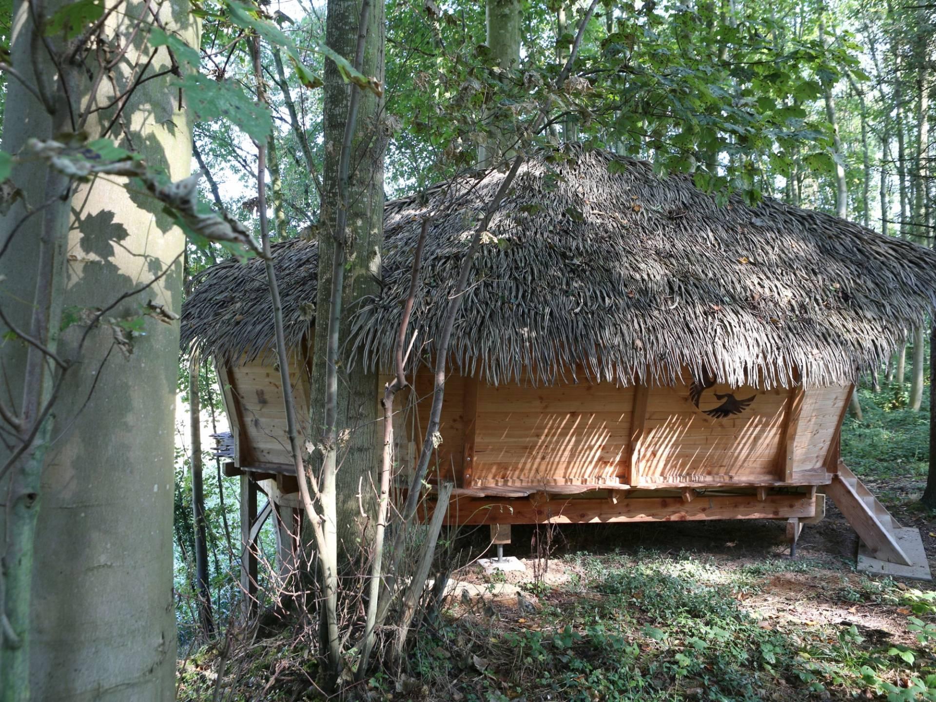 la cabane retour d 39 orient cabane dans les arbres picardie hauts de france location insolite. Black Bedroom Furniture Sets. Home Design Ideas