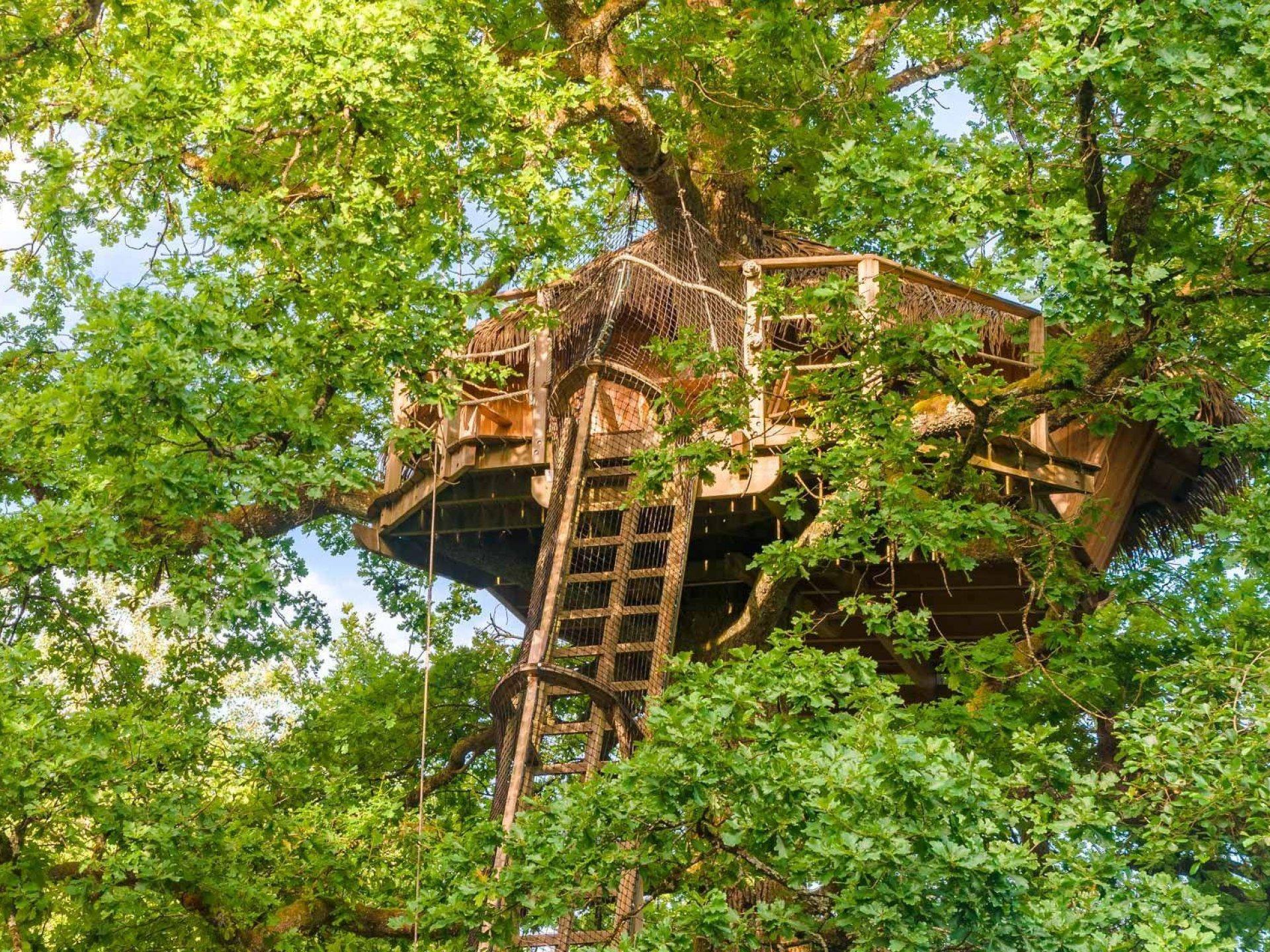 vasion cabane dans les arbres franche comt bourgogne franche comt hebergement insolite. Black Bedroom Furniture Sets. Home Design Ideas