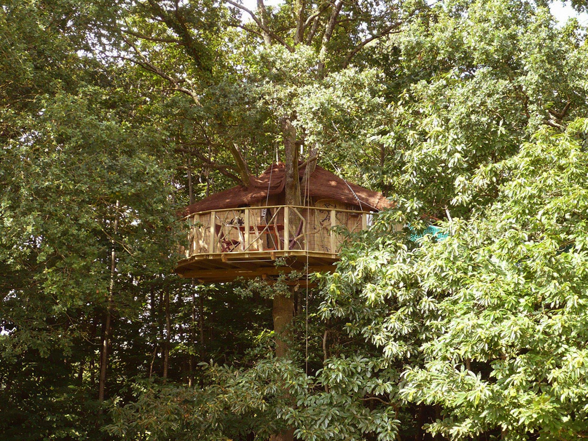 farfadets cabane dans les arbres bretagne hebergement insolite dormir bulle. Black Bedroom Furniture Sets. Home Design Ideas