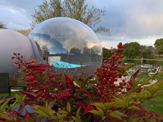 Les bulles d'O