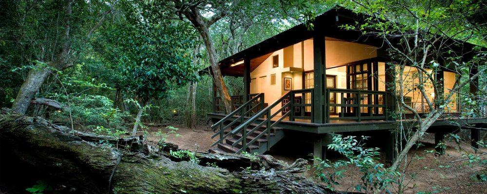 L'écologe, la nouvelle tendance pour vos vacances